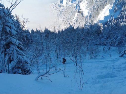 le sentier Vermorel – la Pinéa – Chartreuse – Février 2021